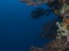 Diamond Rock in Saba