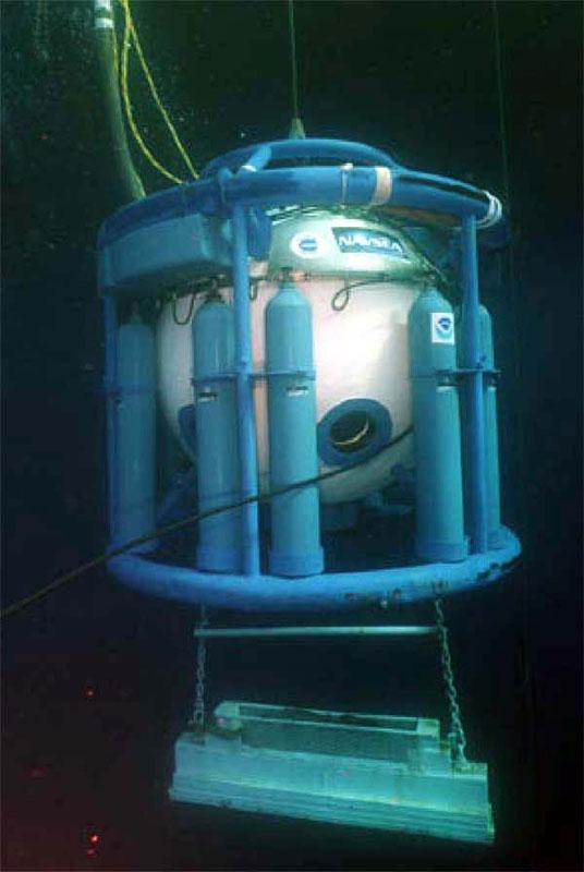 Les Fruits De Mer    Blog Archive    The Diving Bell