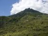 Mt. Scenery