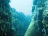 Underwater Canyon
